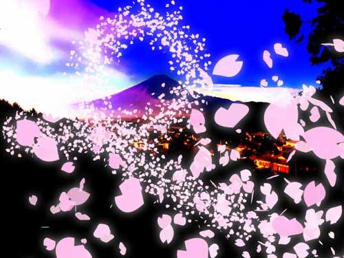桜の花びらが舞いあがる